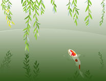 Willow and carp Royalty Free Stock Photos