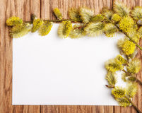 Willow catkin on the old wooden table and paper blank Royalty Free Stock Photo
