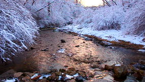 Willow Creek Winter Scene Illinois arkivfilmer