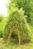 Willow door to small children house Royalty Free Stock Photography