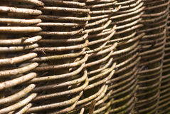 Willow fence Stock Photography