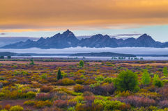 Willow Flats - Grand Teton. Grand Teton Peaks covered in thick fog - taken from willow flats royalty free stock photography