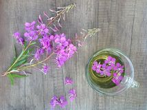 Willow herb Ivan tea in cup at the wood table workplace. As background stock image