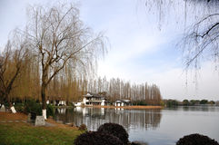 Willow in the lake. Hangzhou, Zhejiang, China,Snow after West Lake Royalty Free Stock Photos