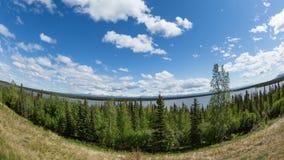 Willow Lake Stock Image
