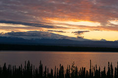 Willow Lake Southeast Alaska Wrangell St Elias National Park arkivbild