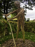 Willow Men, Stockbild