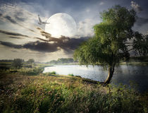 Willow and moon Royalty Free Stock Photography