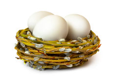 Willow nest with three white eggs Royalty Free Stock Photography