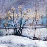 Willows at a pond Royalty Free Stock Photo