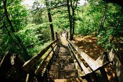 Willow River State Park de negligência em Wisconsin 2 Fotos de Stock Royalty Free