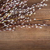 Willow on rustic wooden planks. Easter Royalty Free Stock Images