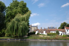 Willow tree on the Cam Royalty Free Stock Photos