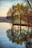 Willow tree reflecting on lake water. Serene autumn scene Royalty Free Stock Image
