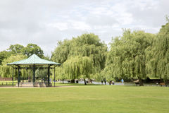 Willow Trees op Rivierbank, Stratford Upon Avon Stock Fotografie