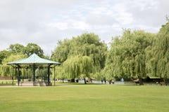 Willow Trees sulla sponda del fiume, Stratford Upon Avon Fotografia Stock
