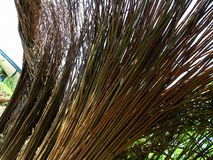 Willow weave. Sculpture made from willow. Close-up royalty free stock photo