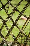 Willow weave garden fence Royalty Free Stock Photos