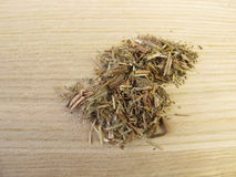 Willowherb, Epilobii herba. In herbalism stock photos