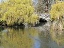 Willows and bridge reflected in pond Stock Photo