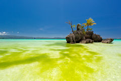 Willy's rock in green seaweed. Boracay, Philippines Royalty Free Stock Images