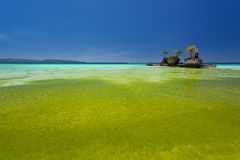 Willy's rock in green seaweed. Boracay, Philippines Royalty Free Stock Photography