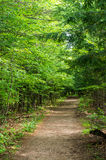 Wilmington Flume Trail Stock Photo