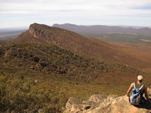 Wilpena pound, Flinders ranges, south australia Royalty Free Stock Photo