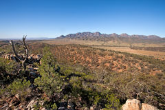 Wilpena Pound Flinders Ranges South Australia. Landscape scenery with beautiful blue sky, and rocky foreground royalty free stock photos