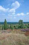 Wilseder Berg,Lueneburg Heath,Lower Saxony,Germany Royalty Free Stock Images