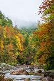 Wilson Creek Autumn 2 arkivfoto