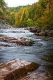 Wilson Creek Autumn 5 arkivfoton