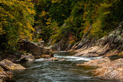 Wilson Creek Autumn 7 royaltyfria bilder