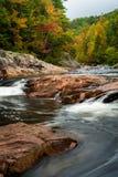Wilson Creek Autumn 8 arkivfoton
