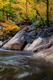 Wilson Creek Autumn 13 arkivbilder