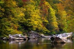 Wilson Creek Autumn 16 fotografering för bildbyråer