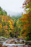Wilson Creek Autumn 2 Stock Photo