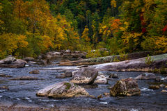 Wilson Creek Autumn 14 Royalty Free Stock Images
