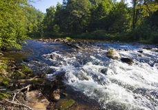 Wilson Creek rapids Stock Photography