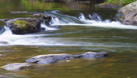 Wilson Creek in summer Royalty Free Stock Photo