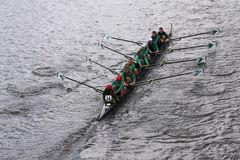 Wilson High School races in the Head of Charles Regatta Women's Youth Eights Stock Images