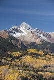 Wilson Peak in Uncompahgre-staatlichem Wald Stockfotos