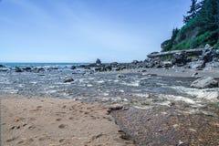 Wilson zatoczka Zdjęcie Royalty Free