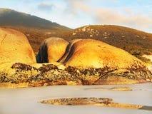 wilsons вискиа promontory пляжа залива Стоковая Фотография