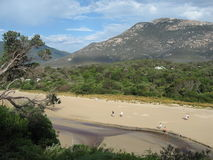 Wilsons Prom. View over Tidal River in Wilsons Promontory National Park in Victoria, Australia Royalty Free Stock Photo