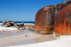 Wilsons Promontory Squeaky Beach Tidal Creek. View of surf Stock Photo