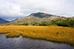 Wilsons Vorgebirge Stockfoto