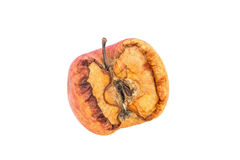 Wilt apple on isolated white background Royalty Free Stock Image