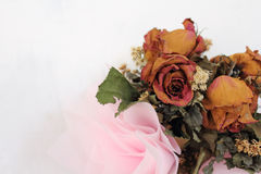 Wilt roses bouquet. Beautiful wilt roses bouquet isolated on white Royalty Free Stock Images