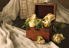 Wilt still life with roses Stock Photos